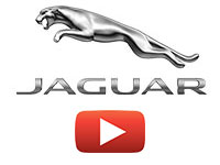 HyperVSN 3D Hologram Targi Jaguar