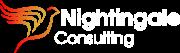 Nightingale Consulting